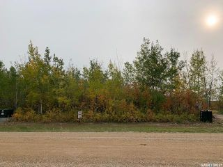 Photo 2: 608 Willow Point Way in Lake Lenore: Lot/Land for sale (Lake Lenore Rm No. 399)  : MLS®# SK871516