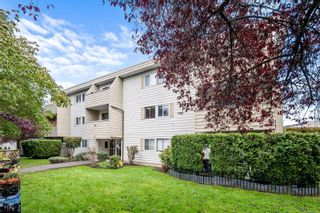Photo 13: 205 611 Constance Ave in : Es Saxe Point Condo for sale (Esquimalt)  : MLS®# 859111