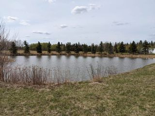 Photo 8: 46, 27118 HWY 18: Rural Westlock County Rural Land/Vacant Lot for sale : MLS®# E4238085