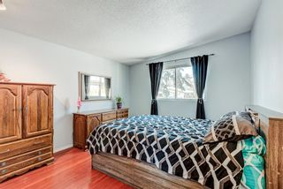 Photo 12: 2015 40 Street SE in Calgary: Forest Lawn Semi Detached for sale : MLS®# A1068609