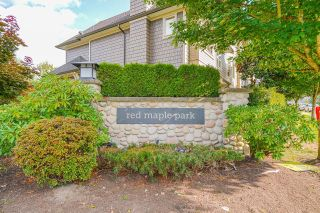 """Main Photo: 145 7938 209 Street in Langley: Willoughby Heights Townhouse for sale in """"RED MAPLE PARK"""" : MLS®# R2612121"""