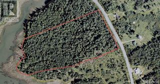 Photo 22: 96 Limekiln Road in Letang: Vacant Land for sale : MLS®# NB055632