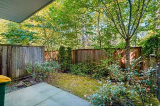 """Photo 33: 6 7298 199A Street in Langley: Willoughby Heights Townhouse for sale in """"York"""" : MLS®# R2602726"""