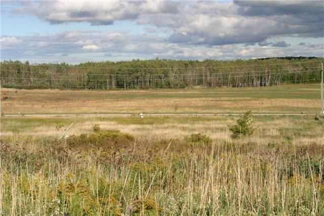 Main Photo: Lot 19 Con 2 in Amaranth: Rural Amaranth Property for sale : MLS®# X4235429
