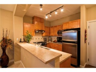 "Photo 2: 413 2969 WHISPER Way in Coquitlam: Westwood Plateau Condo for sale in ""Summerlin at Silver Spring"" : MLS®# V1040932"