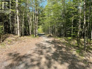 Photo 15: 1372 LAKE LORRAINE Road in Tory Hill: Vacant Land for sale : MLS®# 40052884