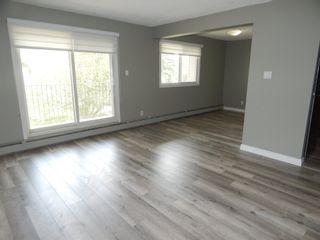 Photo 15:  in Edmonton: Zone 29 Condo for sale : MLS®# E4248069