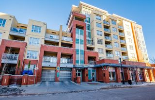 Photo 22: 303 1110 3 Avenue NW in Calgary: Hillhurst Apartment for sale : MLS®# A1060086