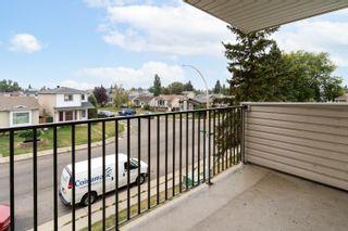 Photo 29:  in Edmonton: Zone 29 Condo for sale : MLS®# E4261180