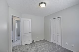 Photo 25: 253 Elgin Way SE in Calgary: McKenzie Towne Detached for sale : MLS®# A1087799
