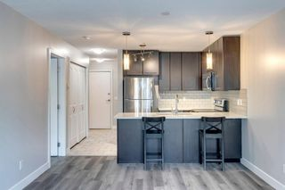 Photo 13: 338 35 Richard Court SW in Calgary: Lincoln Park Apartment for sale : MLS®# A1124714