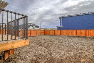 Photo 48: 12 Cranbrook Bay SE in Calgary: Cranston Detached for sale : MLS®# A1042185