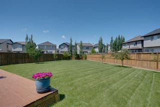 Photo 45: 160 Brightonstone Gardens SE in Calgary: New Brighton Detached for sale : MLS®# A1009065