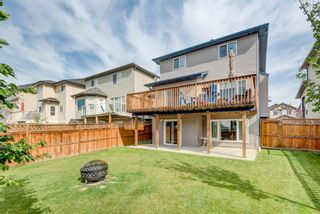 Photo 34: 17 Royal Birch Landing NW in Calgary: Royal Oak Residential for sale : MLS®# A1060735
