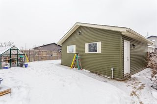 Photo 28: 175 Auburn Bay Heights SE in Calgary: Auburn Bay Detached for sale : MLS®# A1064483