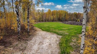 Photo 13: #9 North Pigeon Lake Estates: Rural Wetaskiwin County Rural Land/Vacant Lot for sale : MLS®# E4265016