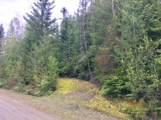 Photo 8: 3,4,6 Armstrong Road in Eagle Bay: Vacant Land for sale : MLS®# 10133907