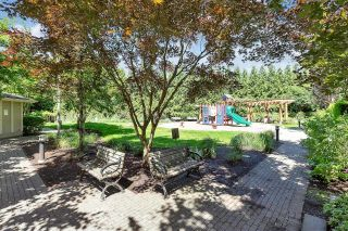 """Photo 27: 214 5655 210A Street in Langley: Salmon River Condo for sale in """"MGMT.CO #:MAINT, FEE:UNITS IN DEVELOPME"""" : MLS®# R2596379"""