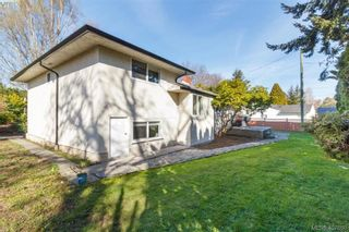 Photo 21: 4033 Cedar Hill Rd in VICTORIA: SE Mt Doug House for sale (Saanich East)  : MLS®# 810108