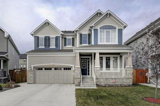 Photo 1: 132 WATERLILY Cove: Chestermere Detached for sale : MLS®# C4306111