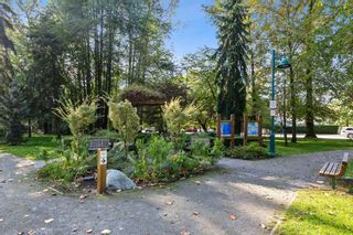 """Photo 20: 301 260 NEWPORT Drive in Port Moody: North Shore Pt Moody Condo for sale in """"THE MCNAIR"""" : MLS®# R2505902"""