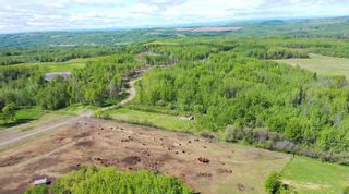 Photo 7: 13934 PACKHAM FRONTAGE Road: Charlie Lake Agri-Business for sale (Fort St. John (Zone 60))  : MLS®# C8039465