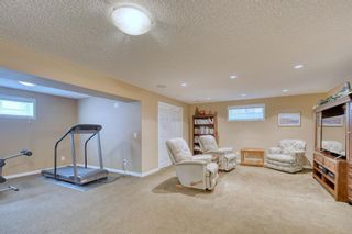 Photo 34: 59 CRANWELL Close SE in Calgary: Cranston Detached for sale : MLS®# A1019826