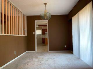 Photo 18: 5115 7B Avenue in Delta: Tsawwassen Central House for sale (Tsawwassen)  : MLS®# R2582410