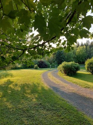 Photo 29: 510 Mount William Road in Mount William: 108-Rural Pictou County Residential for sale (Northern Region)  : MLS®# 202120400