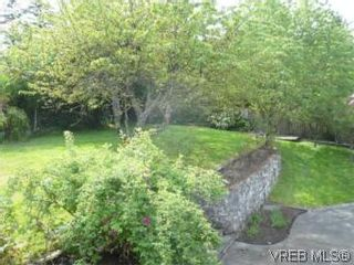 Photo 6: 6705 Central Saanich Rd in VICTORIA: CS Tanner House for sale (Central Saanich)  : MLS®# 504838