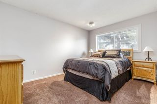 Photo 9: 260 Van Horne Crescent NE in Calgary: Vista Heights Detached for sale : MLS®# A1047650
