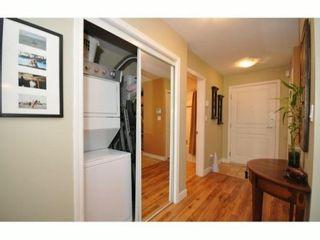 "Photo 19: 313 3333 W 4TH Avenue in Vancouver: Kitsilano Condo for sale in ""BLENHEIM TERRACE"" (Vancouver West)  : MLS®# V826747"