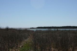 Photo 1: West Sable Road in Little Harbour: 407-Shelburne County Vacant Land for sale (South Shore)  : MLS®# 201911281