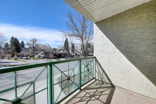 Photo 26: 202 2 14 Street NW in Calgary: Hillhurst Apartment for sale : MLS®# A1094685