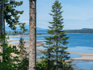Photo 34: 4827 Ocean Trail in : PQ Bowser/Deep Bay House for sale (Parksville/Qualicum)  : MLS®# 877762