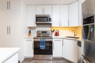 Photo 45: 101 Uganda Ave in : Es Kinsmen Park House for sale (Esquimalt)  : MLS®# 884915