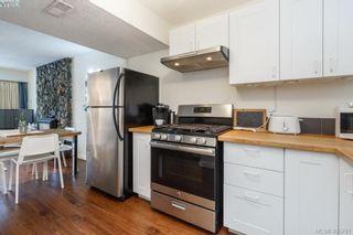 Photo 20: 3648 Bridgeport Pl in VICTORIA: SE Maplewood House for sale (Saanich East)  : MLS®# 806290