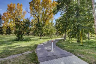 Photo 38: 5823 Bow Crescent NW in Calgary: Bowness Detached for sale : MLS®# A1150194