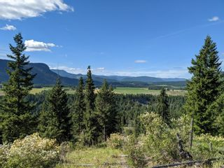 Photo 13: 455 Albers Road, in Lumby: Agriculture for sale : MLS®# 10235228