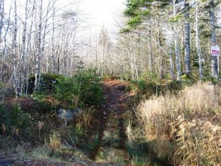 Photo 1: Lot Highway 107 in West Petpeswick: 35-Halifax County East Vacant Land for sale (Halifax-Dartmouth)  : MLS®# 202114068