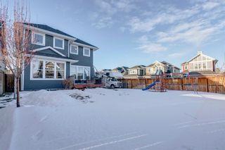 Photo 44: 239 AUBURN SPRINGS Close SE in Calgary: Auburn Bay Detached for sale : MLS®# A1061527
