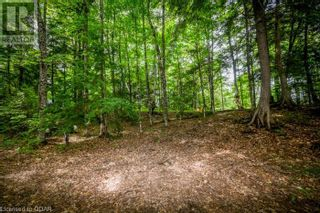 Photo 22: 0 MARKS POINT Road in Bancroft: Vacant Land for sale : MLS®# 40141117