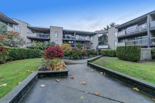 Photo 6: 203 6105 KINGSWAY in Burnaby: Highgate Condo for sale (Burnaby South)  : MLS®# R2224311