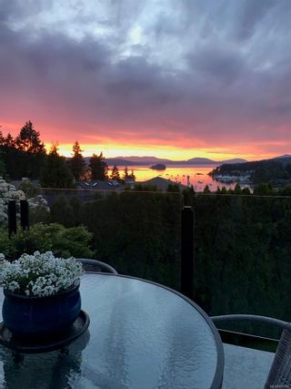 Photo 37: 6847 Woodward Dr in : CS Brentwood Bay House for sale (Central Saanich)  : MLS®# 876796