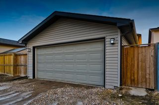 Photo 29: 169 SKYVIEW RANCH DR NE in Calgary: Skyview Ranch House for sale : MLS®# C4278111