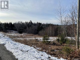 Photo 4: - Harbour Heights Street in St. George: Vacant Land for sale : MLS®# NB053031