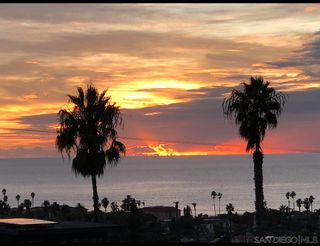 Photo 28: OCEAN BEACH House for sale : 5 bedrooms : 4523 Orchard Ave in San Diego