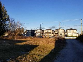 Photo 4: 12135 203 Street in Maple Ridge: Northwest Maple Ridge Land for sale : MLS®# R2350746