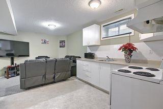 Photo 39: 145 Taravista Crescent NE in Calgary: Taradale Detached for sale : MLS®# A1125771