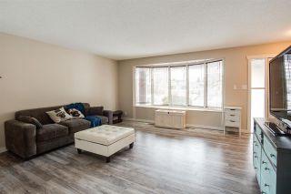 Photo 6: 7315 83 Avenue in Edmonton: Zone 18 House Half Duplex for sale : MLS®# E4225626